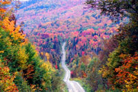 tour4-fall-foliage.jpg