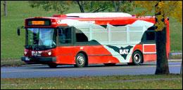 Bat Bus